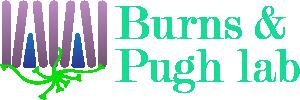Burns & Pugh lab